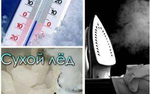 При воздействии какой температуры погибают клопы?