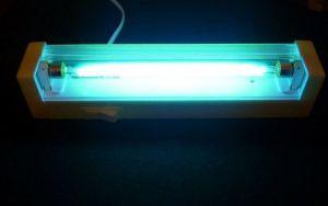 Вопрос №24 – Убивает ли свет кварцевой лампы яйца глистов?