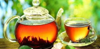 Изучение эффективности монастырского антипаразитарного чая