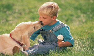 Какими симптомами проявляется у ребенка глистная инвазия