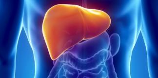 Симптомы присутствия паразитов в печени человека и эффективные методы лечения