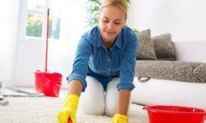 Способы обработки квартиры и вещей от вшей
