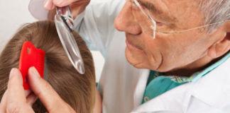 Способы лечения головных вшей