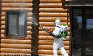 Все о фумигации деревянных домов с помощью фосфина против жуков-короедов