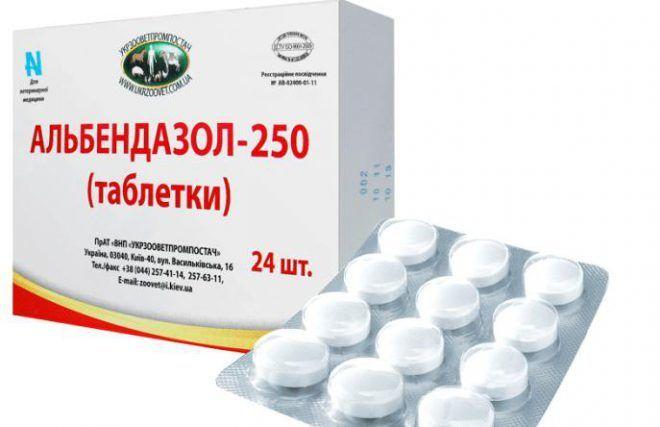 Альбендазолом