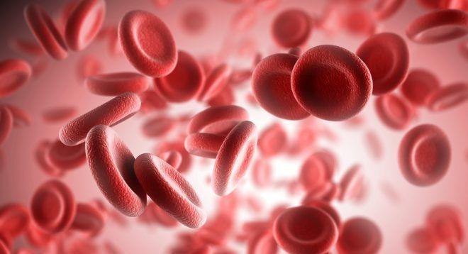 Анемия от гельминтов