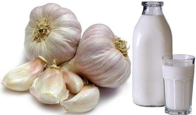 Можно использовать чеснок с молоком
