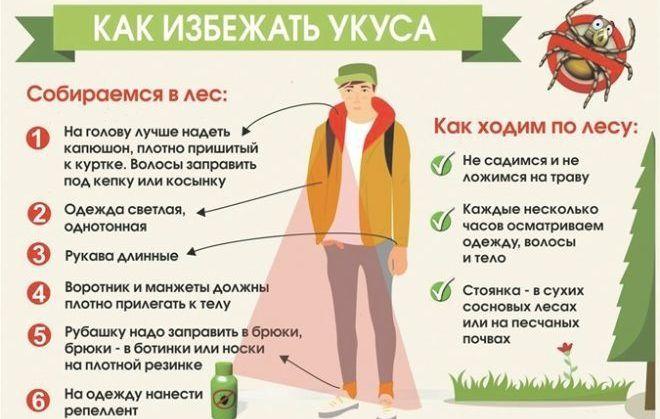 Как защититься от клещей