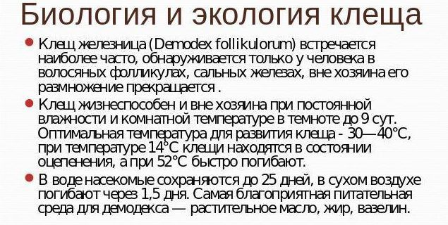 Клещ демодекс фолликулорум