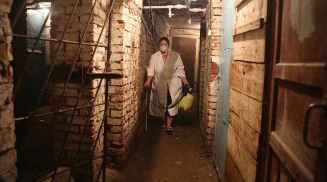 Подвальные помещения место с которого можно занести блох в свою квартиру