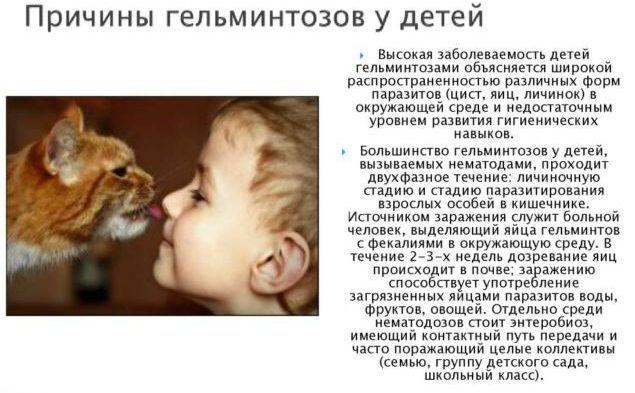 Причины гельминтозов у детей