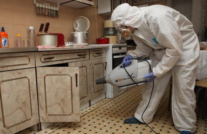 Применение инсектицидов опасно для здоровья человека