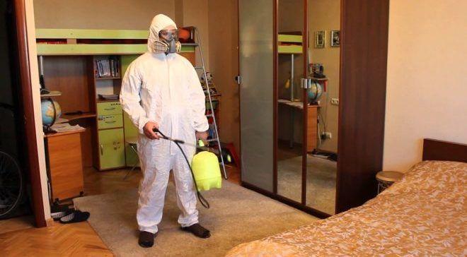 Проведите дезинфекцию в квартире от блох