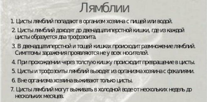 Факты о лямблиях