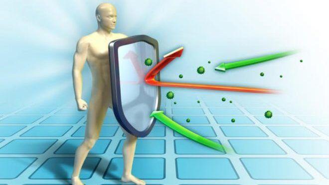 Повышения иммунитета
