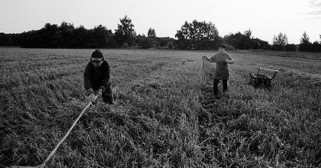работы в поле